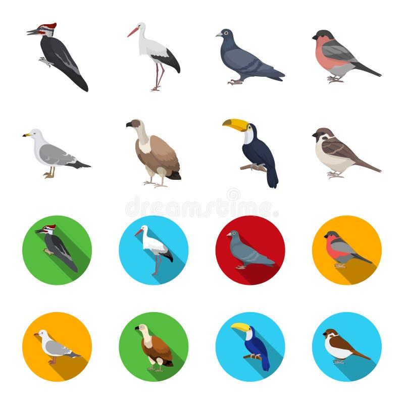 Fiskmås, tukan och annan art Fåglar ställde in samlingssymboler i tecknade filmen, rengöringsduk för illustration för materiel fö royaltyfri illustrationer