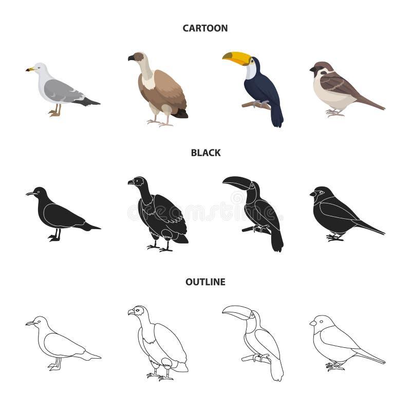 Fiskmås, tukan och annan art Fåglar ställde in samlingssymboler i tecknade filmen, svart, materiel för symbol för översiktsstilve vektor illustrationer