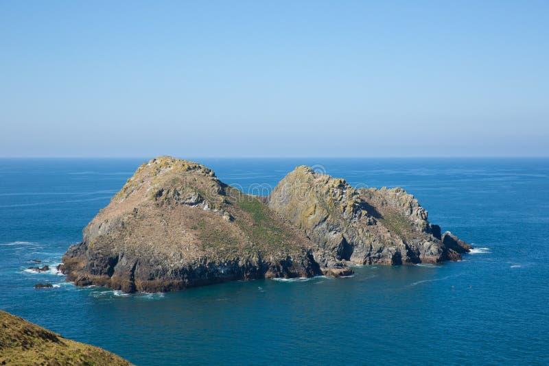 Fiskm?sen vaggar den norr Cornwall f?r den Holywell fj?rden h?rliga dagen med det bl? havet och himmel royaltyfria foton