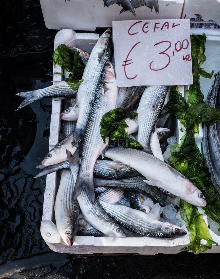 Fiskmarknad i Naples arkivbilder
