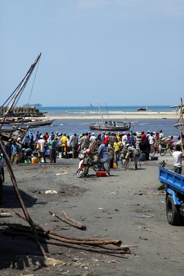Fiskmarknad i stenstad royaltyfria foton