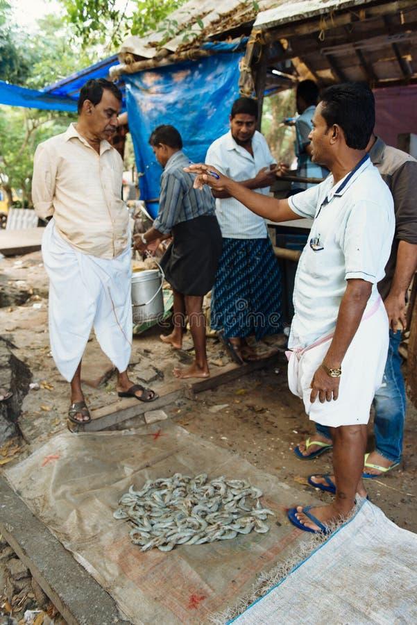 Fiskmarknad på fortet Kochi, Indien royaltyfri fotografi