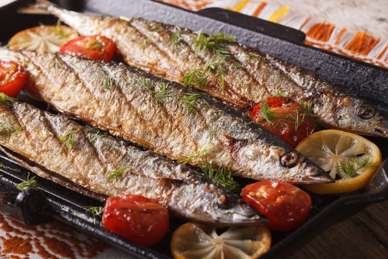 Fiskmeny: grillad saury med grönsaker på gallerpannan royaltyfri foto