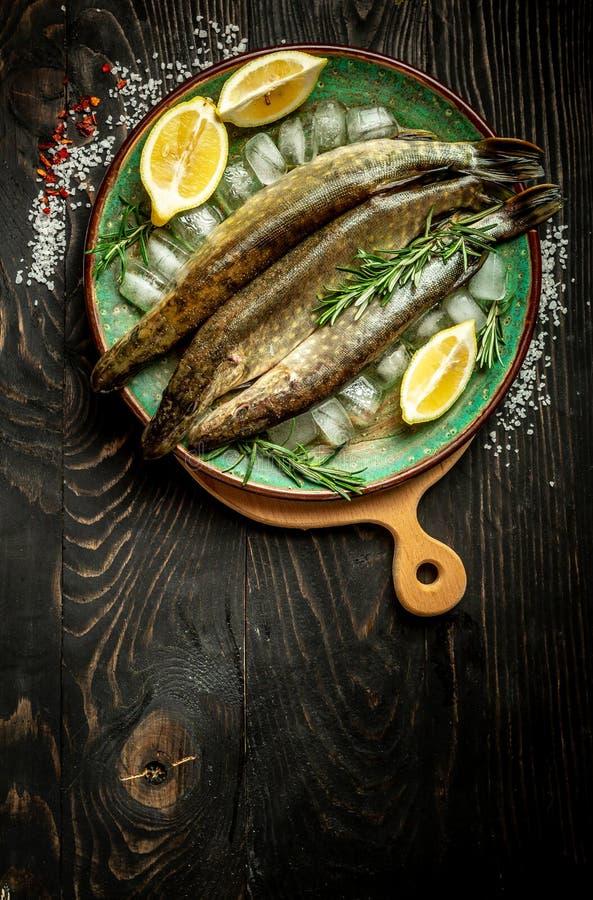 Fiskpik Nordlig pik Esox Lucius och matingredienser på tabellen Bästa sikt med kopieringsutrymme arkivfoto
