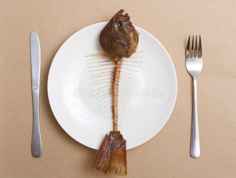 fiskplattaskelett royaltyfri foto