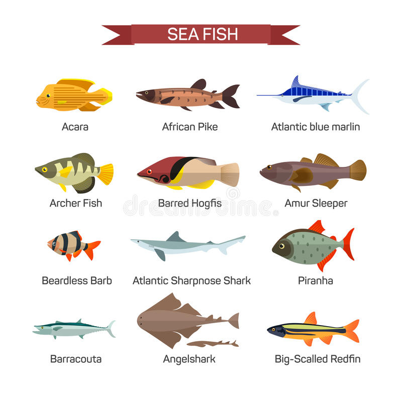 Fiskvektoruppsättning i plan stildesign Samling för hav-, havs- och flodfisksymboler vektor illustrationer