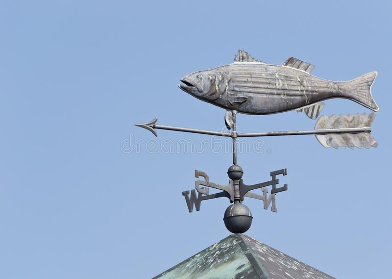 FiskWeathervane royaltyfri bild
