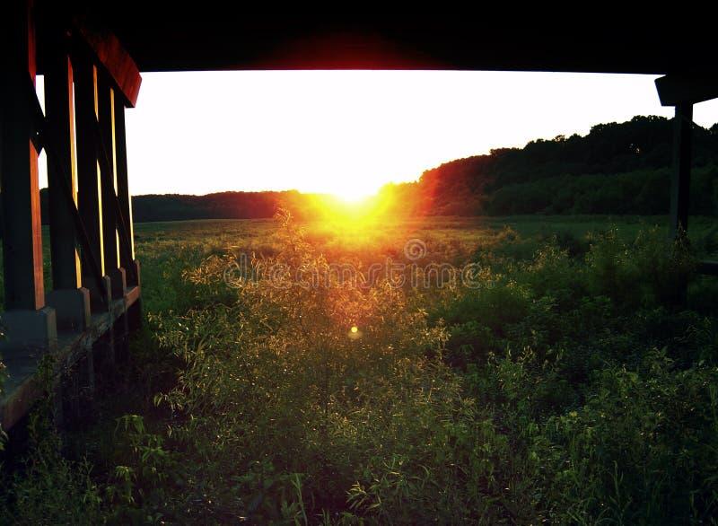 Fissando nel Sun sotto un ponte nell'Alabama fotografie stock