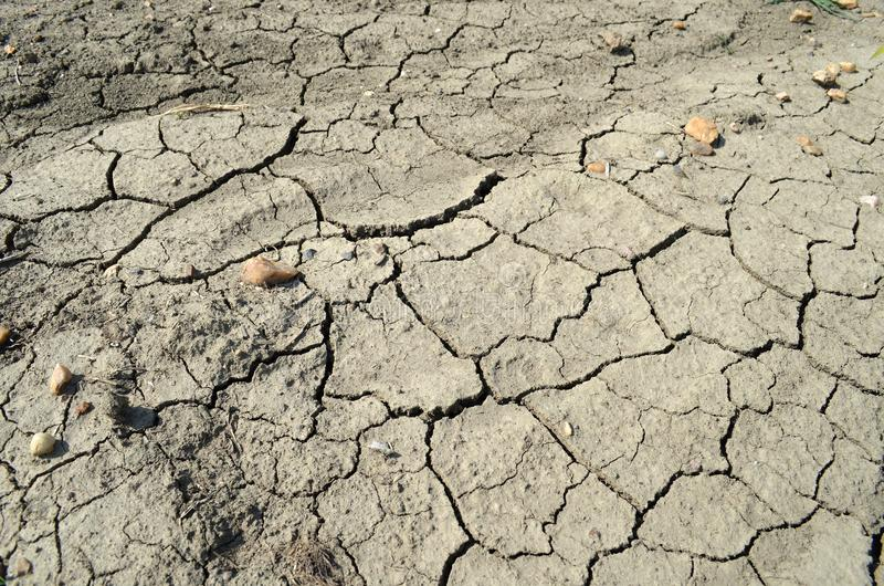 Fissured jord royaltyfria foton