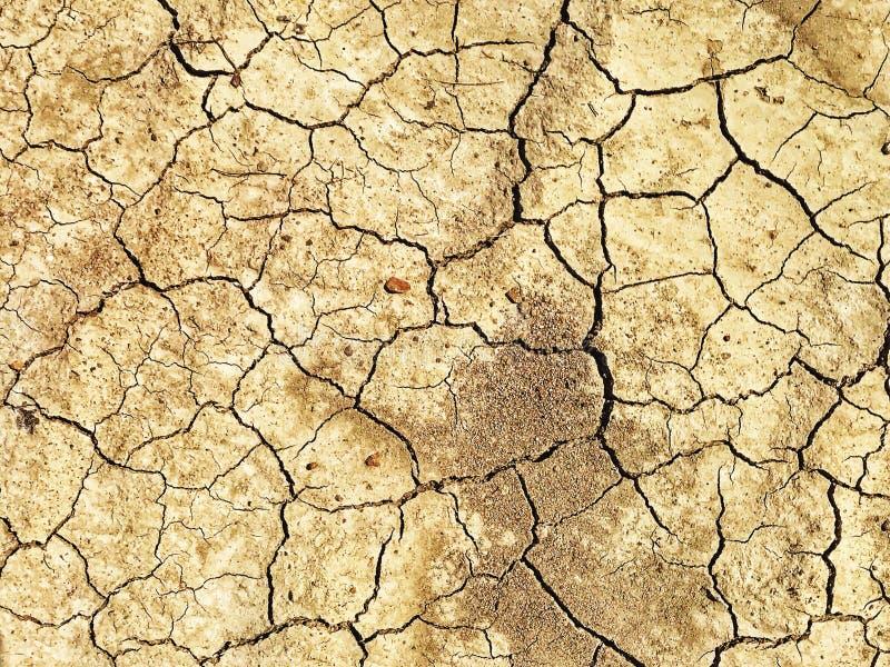 Fissures de boue image libre de droits