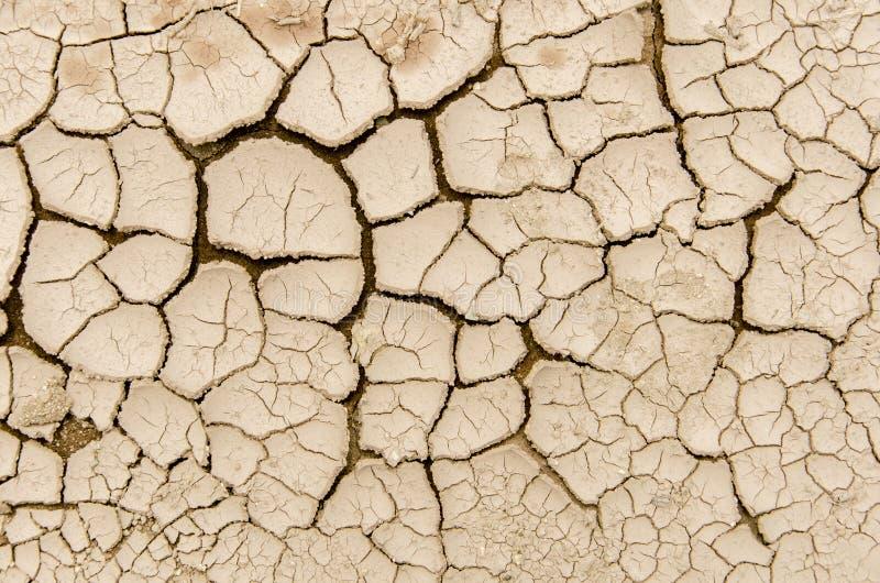 Fissures de sol image stock