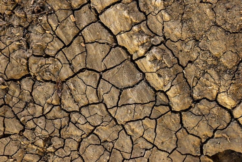 Fissures sur la fin de sol sec, la terre aride photos libres de droits