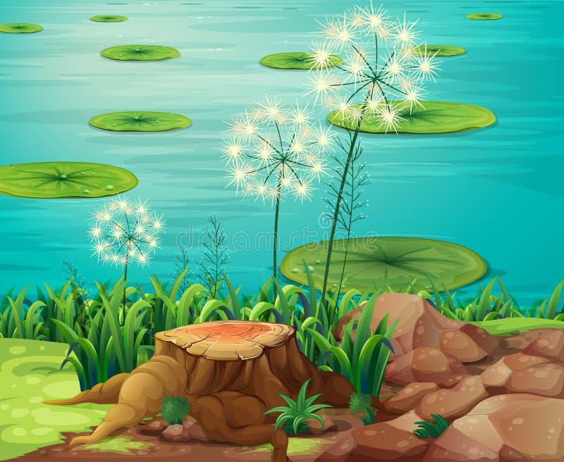 Fiszorek drzewo przy riverbank ilustracji