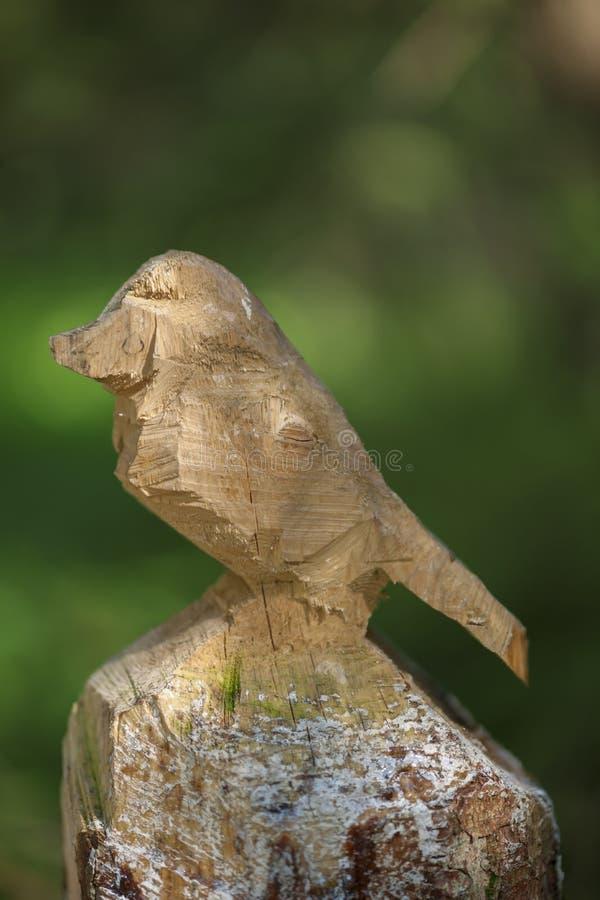 Fiszorka ptak na zielonym tle obrazy royalty free