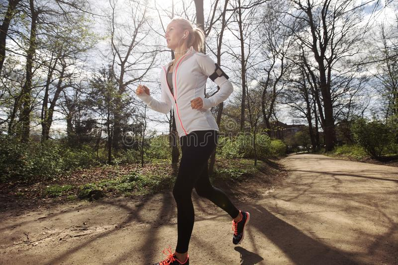 Fit female model jogging in forest. Fitness woman running in park on summer day. Caucasian female runner during outdoor workout. Fit female model jogging in royalty free stock images