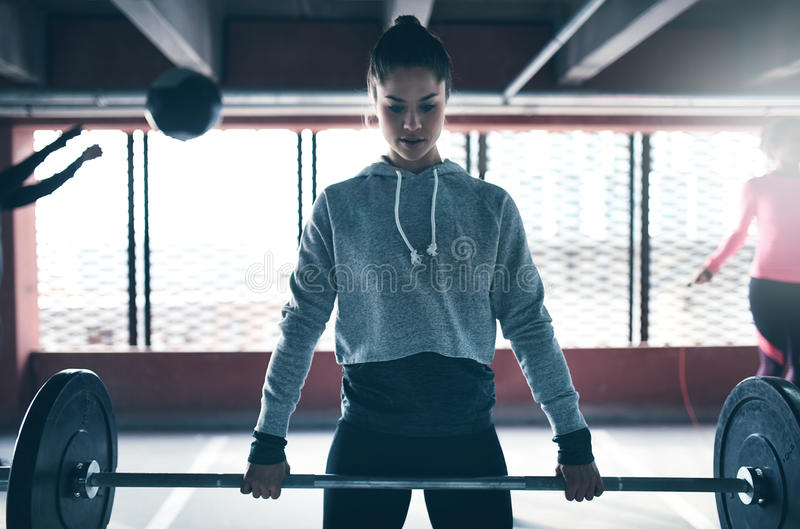 Fit healthy woman lifting a weight barbell royalty free stock image