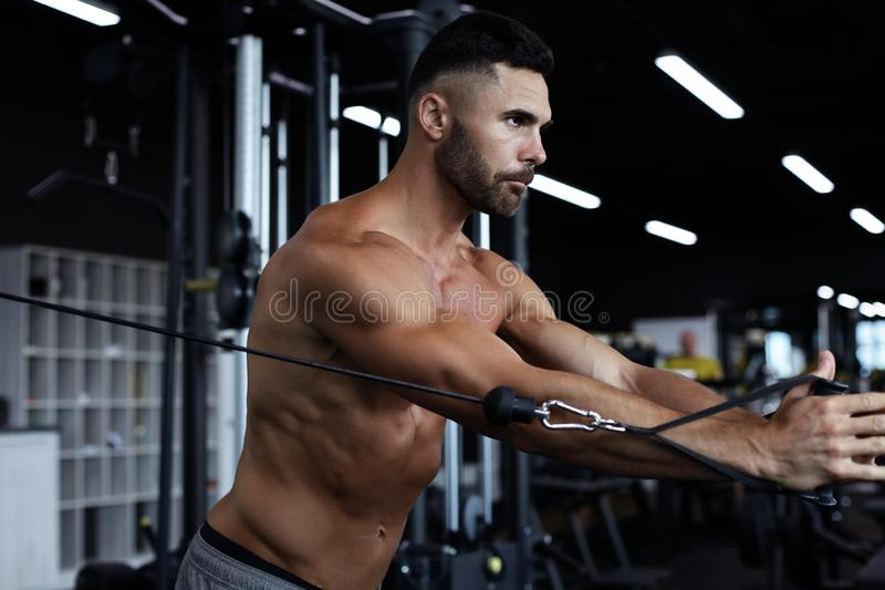 Fit and muscular man trains pectoral muscles on a block simulator in the gym.  royalty free stock photo