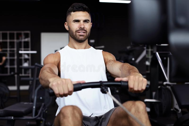 Fit and muscular man using rowing machine at gym stock photography