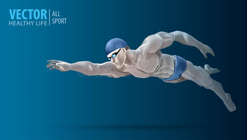 Fit swimmer training in the swimming pool. Professional male swimmer inside swimming pool. Butterfly stroke. A man dives into the vector illustration