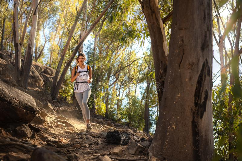 Fit trail runner in mountain trail marathon royalty free stock image