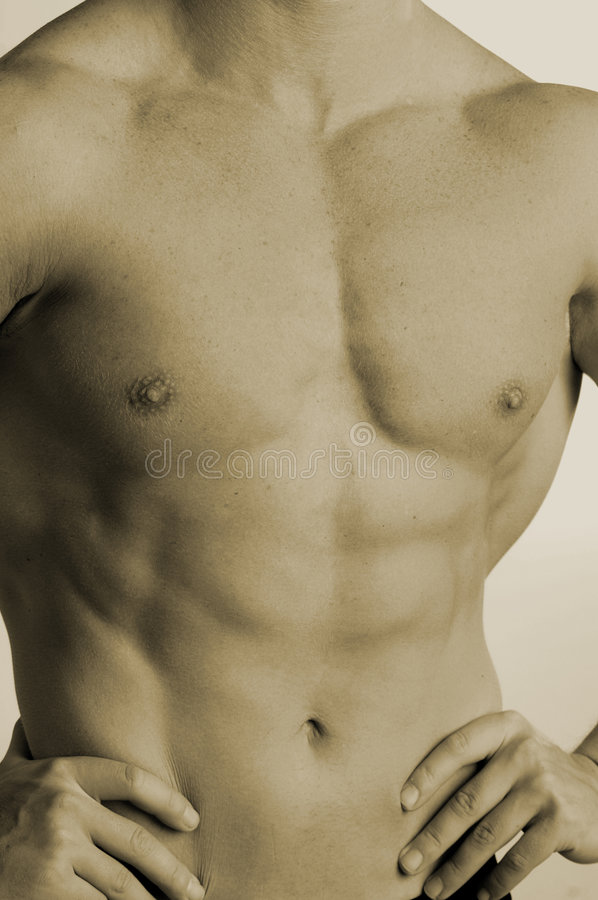 Download Fit and trim stock image. Image of torso, nipples, freckles - 450393