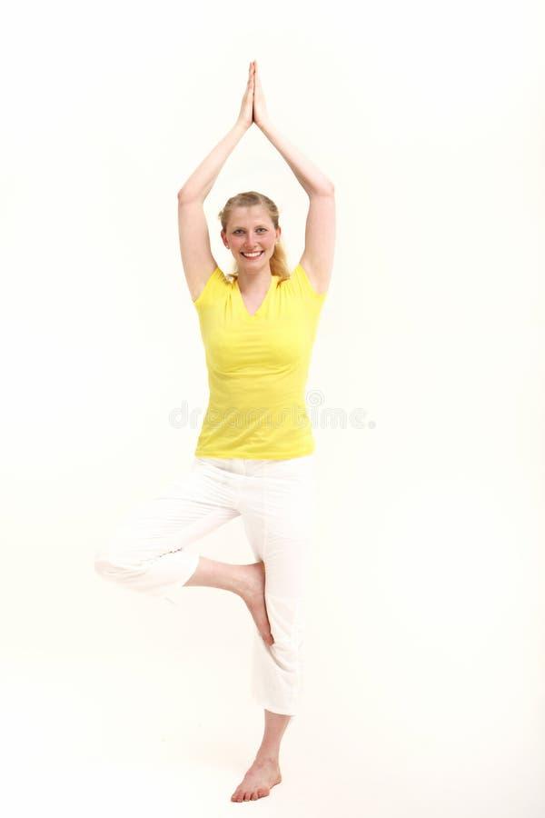 Free Fit Woman Practising Yoga Royalty Free Stock Photo - 26309105