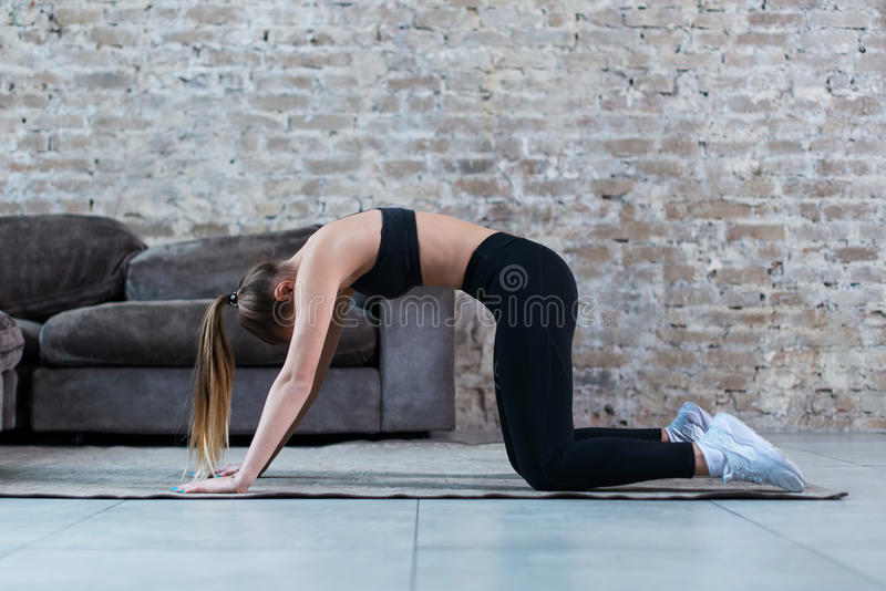 Fit young Caucasian woman practicing yoga at home standing in cat and cow pose arching her back stock image