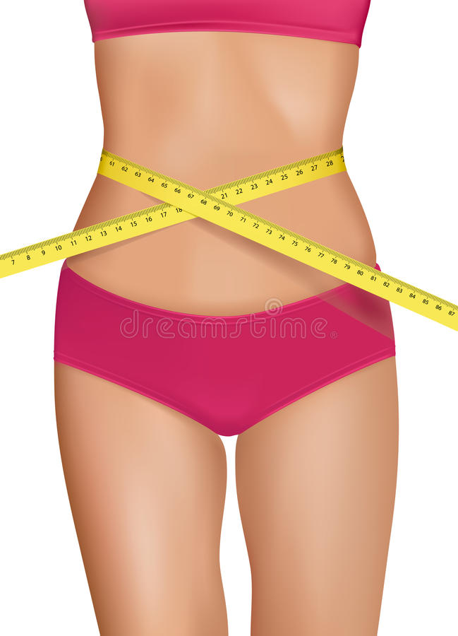 Fit young woman body with measured waistline. stock illustration