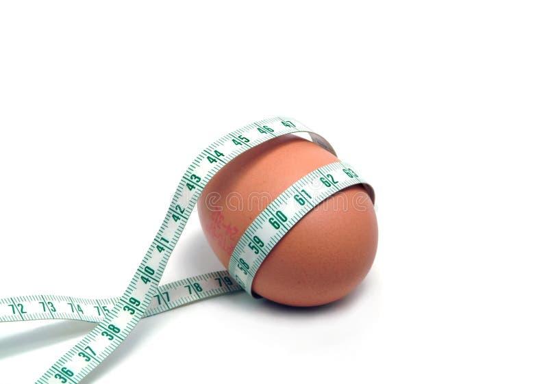Fita da medida envolvida em torno do ovo fotos de stock