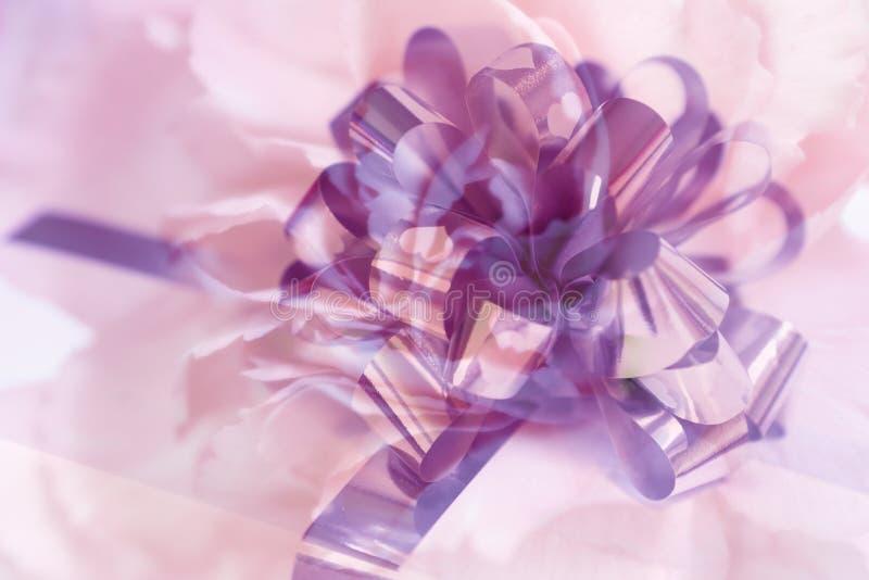 Fita e flor fotografia de stock royalty free