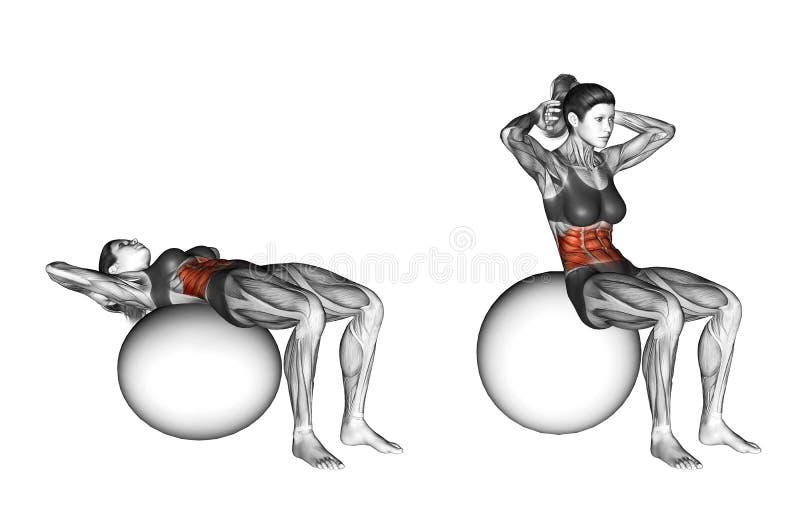 Fitball exercising. Ball Crunch. Female stock photos