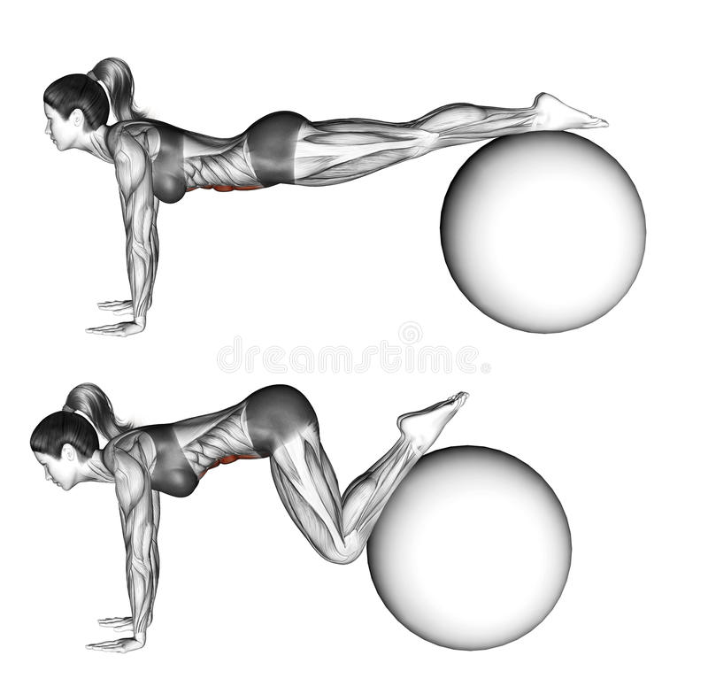 Fitball exercising. Ball pull-in. Female stock photography