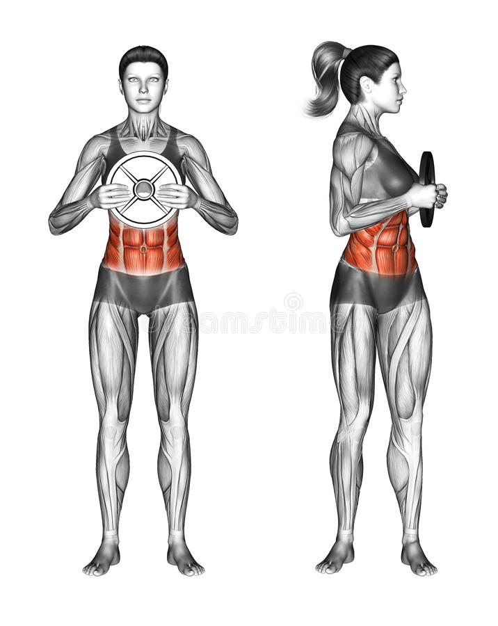 Free Fitball Exercising. Oblique Twist With Weight Plate. Female Royalty Free Stock Photos - 66625328