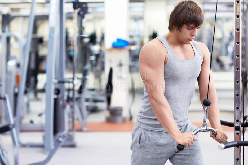Download Fitness stock photo. Image of male, young, healthy, caucasian - 29435584