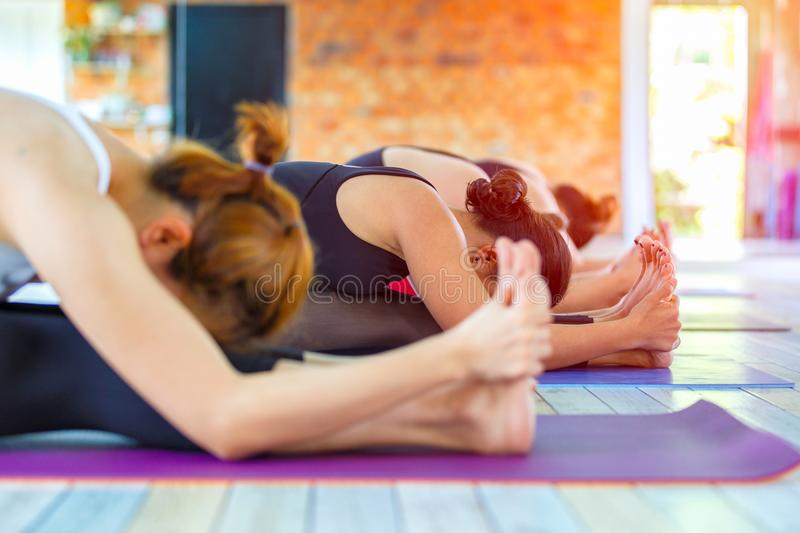 Fitness asian female group doing namaste yoga pose in row at the yoga class. Selective focus stock images