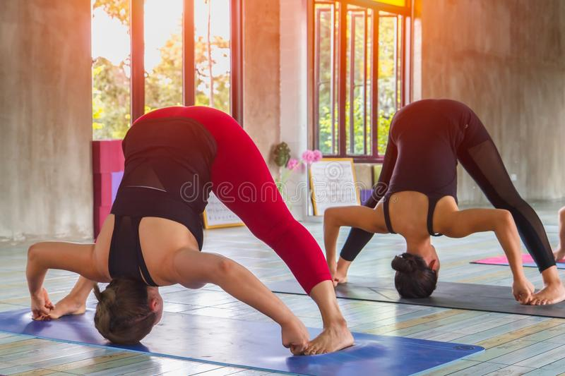Fitness asian female group doing warm up yoga pose in row at the yoga class. Selective focus stock images