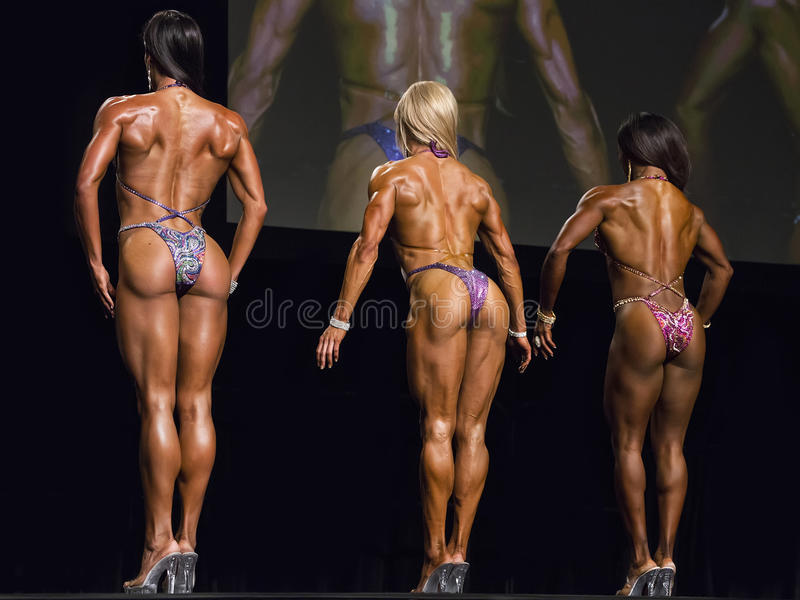 Fitness Beauties Line Up In Vancouver royalty free stock photo