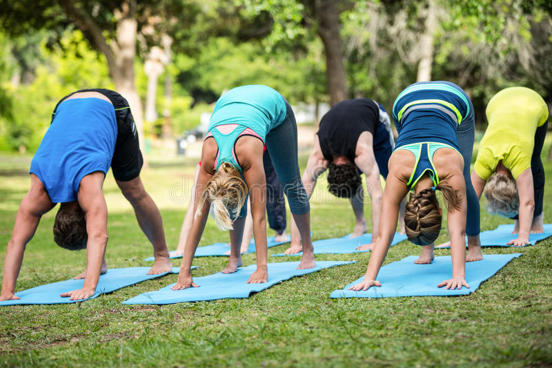 Fitness class practicing yoga royalty free stock image