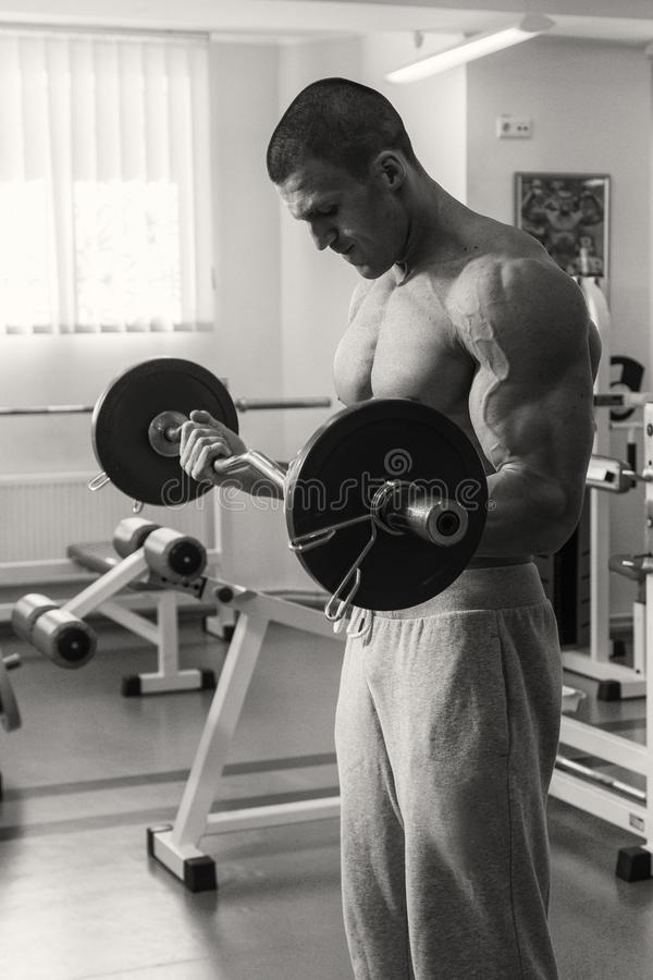 Fitness coach trains with dumbbells royalty free stock image