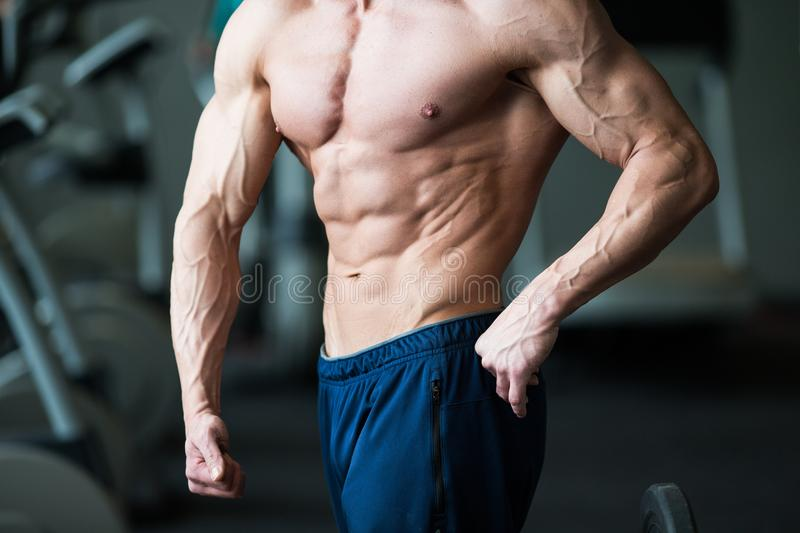 Muscular young man with perfect torso with six pack abs in