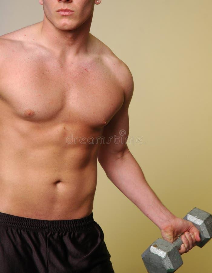 fitness dolców fizycznej obraz stock