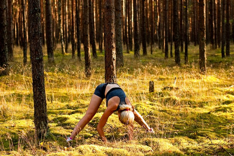 Fitness exercises in the forest stock image