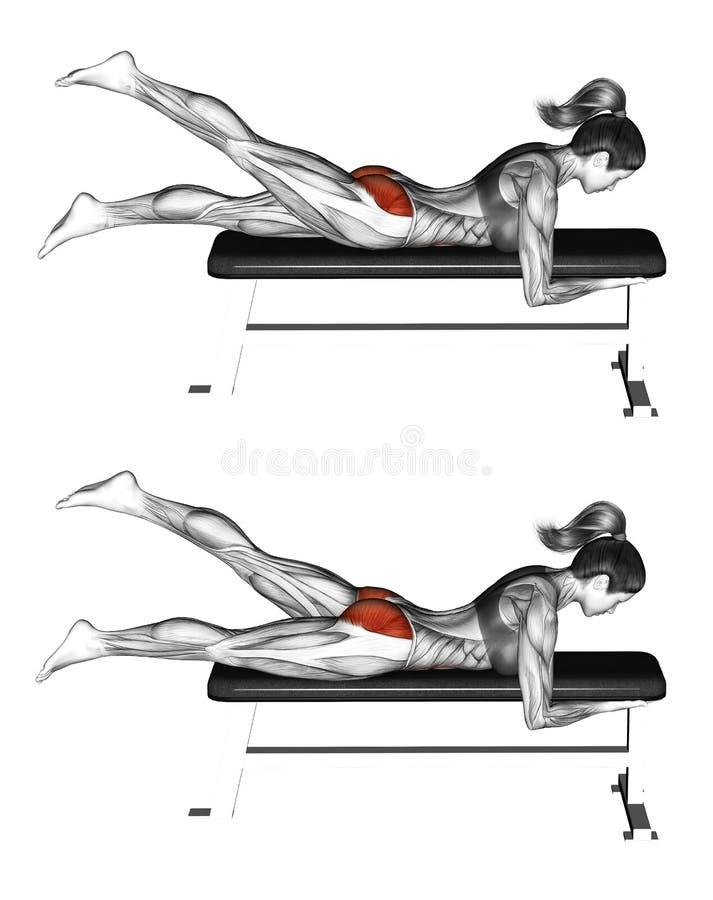 Fitness exercising. Alternate Leg Reverse Hyper. Female royalty free stock image