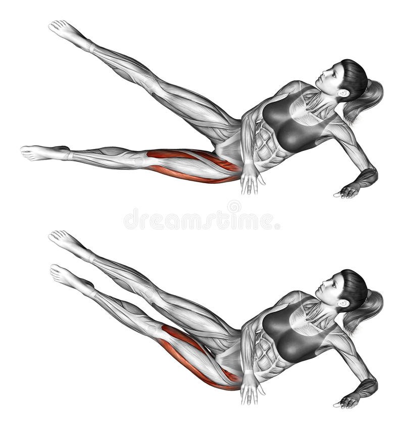 Fitness exercising. Lifting feet to foot. Female stock photography