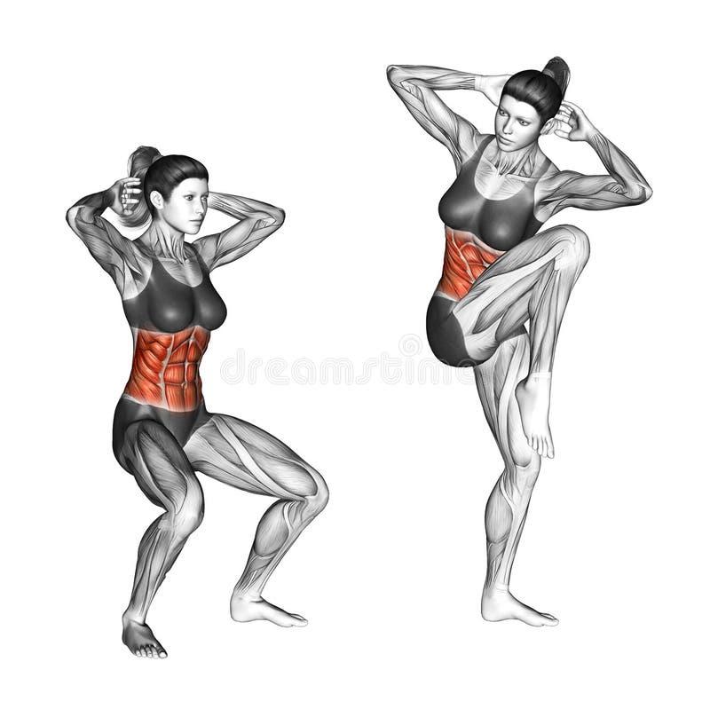Fitness exercising. Quarter Squat Crunch. Female stock photography