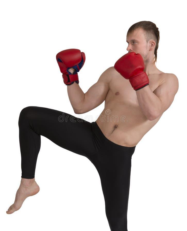 Fitness   Formação imagens de stock