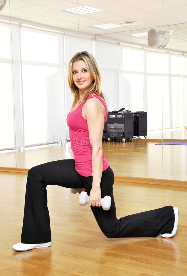 Download Fitness girl in the gym stock image. Image of aerobics - 22224241