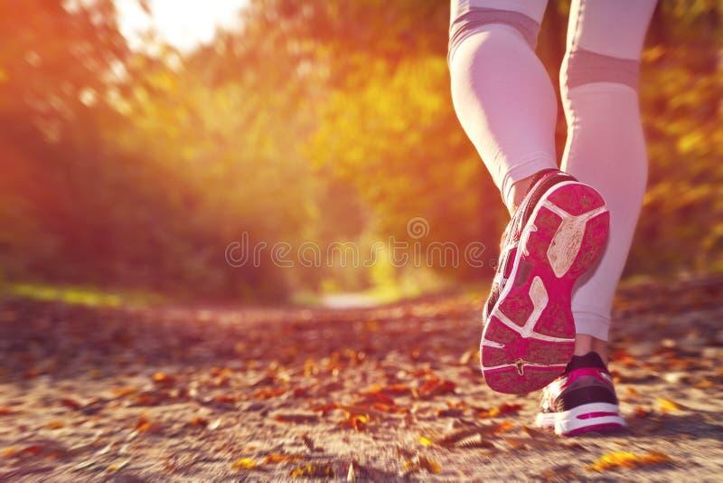 Fitness Girl running. At sunset in forest stock illustration