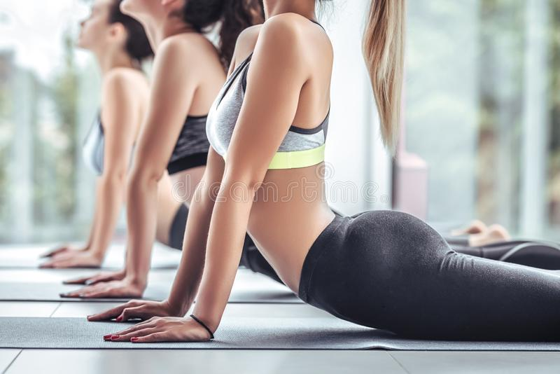 Fitness group doing cobra pose in row at the yoga class. Close up view stock photo