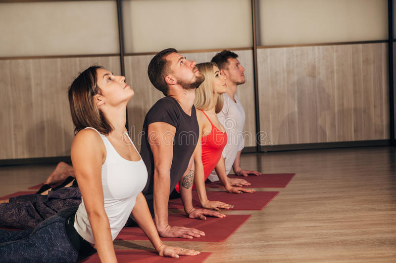 Fitness group doing cobra pose in row at the yoga class. Four young people doing yoga exercises stock photo